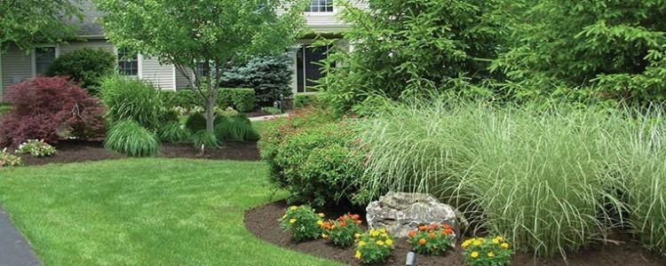 Property Gardening & Landscaping