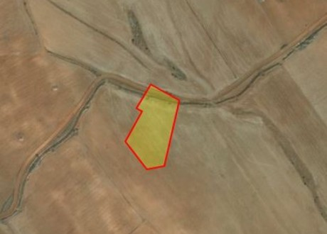 Agricultural Land For Sale in Kato Koutrafas, Nicosia - L-70961