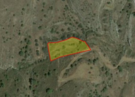 Agricultural Land For Sale in Kapedes, Nicosia - L-69580