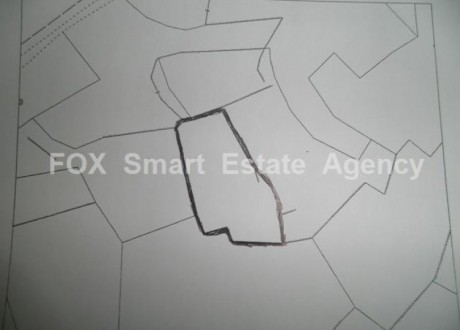 Agricultural Land For Sale in Tseri, Nicosia - L-66393