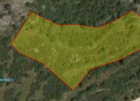 Agricultural Land For Sale in Choulou, Paphos - L-70008