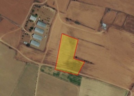 Agricultural Land For Sale in Pera Orinis, Nicosia - L-71531