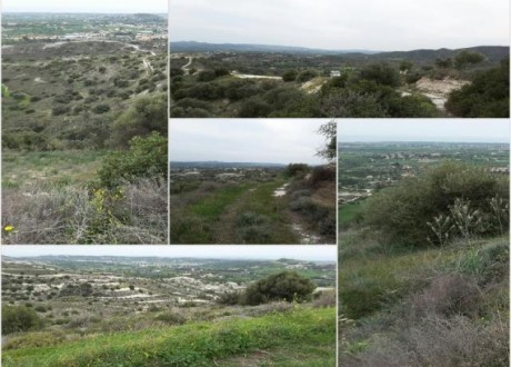 Agricultural Land For Sale in Anglisides, Larnaca - L-64505