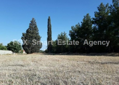 Residential Land  For Sale in Alampra, Nicosia - L-66187