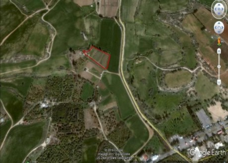 Agricultural Land For Sale in Derynia, Famagusta - L-69894