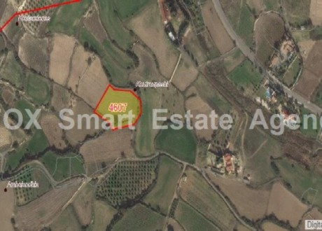 Agricultural Land For Sale in Pissouri, Limassol - L-67169
