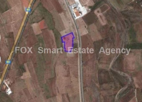 Agricultural Land For Sale in Astromeritis, Nicosia - L-64847