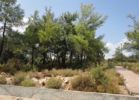 Residential Land  For Sale in Souni, Limassol - P-71449