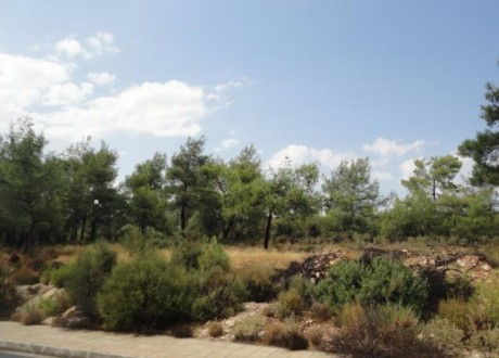 Residential Land  For Sale in Souni, Limassol - P-71450