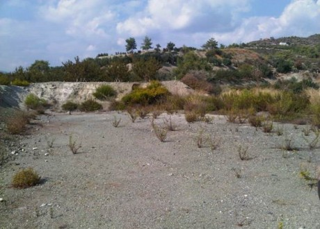 Agricultural Land For Sale in Kellaki, Limassol - L-63308