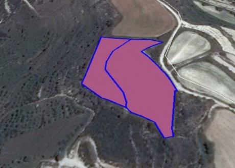 Agricultural Land For Sale in Tsada, Paphos - L-66860
