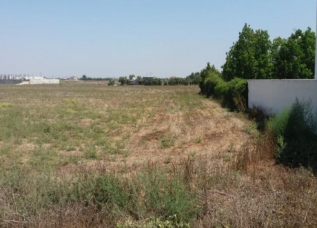 Residential Land  For Sale in Kiti, Larnaca - L-67314