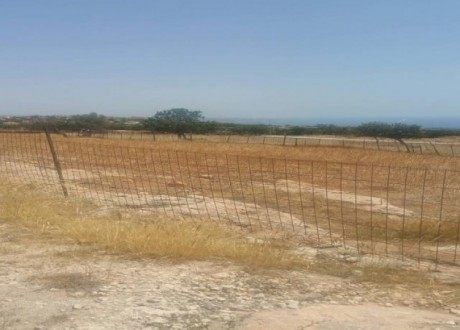 Residential Land  For Sale in Peyia, Paphos - L-71447