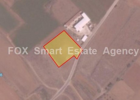 Agricultural Land For Sale in Akaki, Nicosia - L-73263