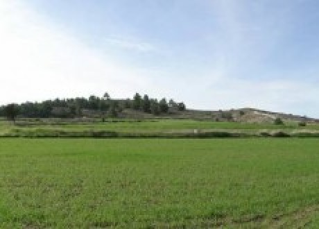 Residential Land  For Sale in Politiko, Nicosia - L-72353