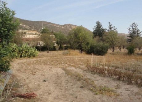 Residential Land  For Sale in Fasoula (lemesou), Limassol - P-71828