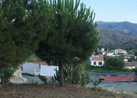 Agricultural Land For Sale in Eptagoneia, Limassol - L-100614