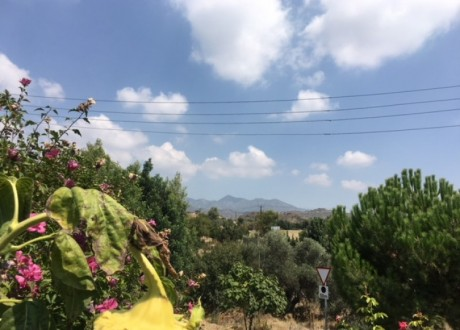 Residential Land  For Sale in Eptagoneia, Limassol - L-101201