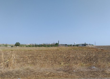 Agricultural Land For Sale in Apostolos Loukas, Larnaca - L-101331