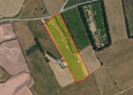 Residential Land  For Sale in Kouklia, Paphos - L-101398