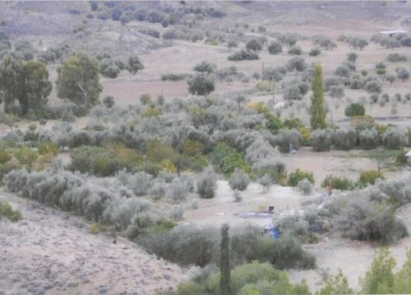 Agricultural Land For Sale in Alampra, Nicosia - L-102327