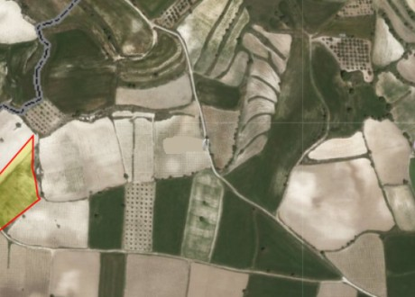 Agricultural Land For Sale in Polemi, Paphos - L-103243