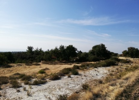 Residential Land  For Sale in Souni, Limassol - P-103312