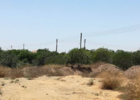 Residential Land  For Sale in Paralimni, Famagusta - L-103562