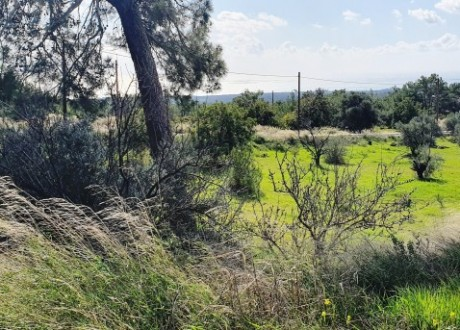Residential Land  For Sale in Souni, Limassol - P-103951