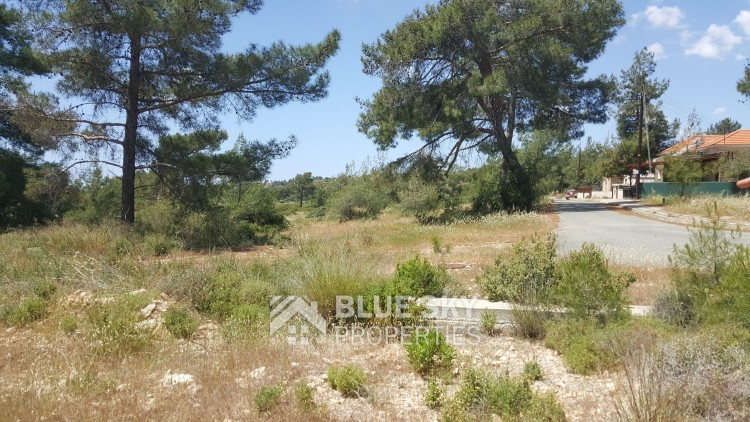 Cyprus for sale in Limassol, Souni