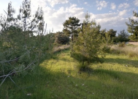 Residential Land  For Sale in Souni, Limassol - P-104393