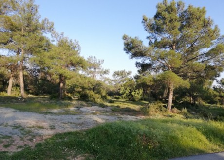 Residential Land  For Sale in Souni, Limassol - P-104395