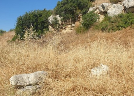 Residential Land  For Sale in Fasoula (lemesou), Limassol - L-104438
