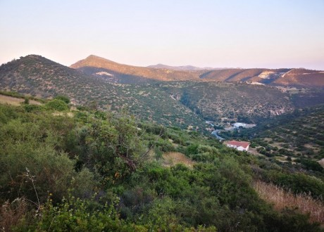 Residential Land  For Sale in Gerasa, Limassol - L-104821