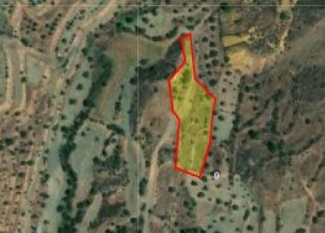 Agricultural Land For Sale in Kapedes, Nicosia - L-105022