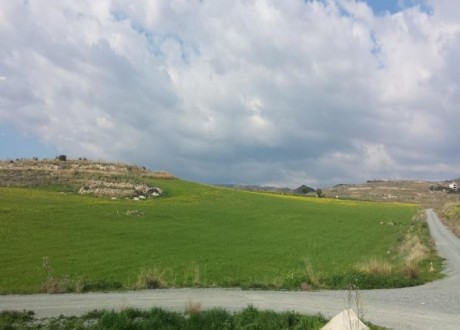 Agricultural Land For Sale in Anarita, Paphos - L-66060