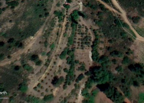 Agricultural Land For Sale in Agioi Vavatsinias, Larnaca - L-107464