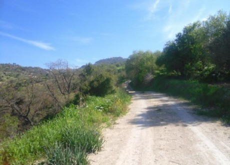 Residential Land  For Sale in Amargeti, Paphos - L-108099