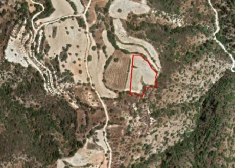 Agricultural Land For Sale in Amargeti, Paphos - L-108188