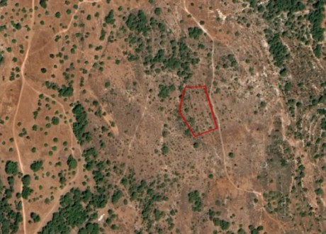 Agricultural Land For Sale in Kathikas, Paphos - L-108605