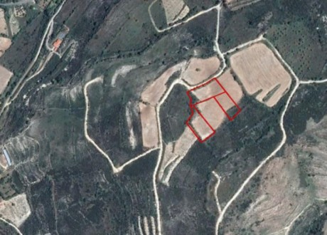 Agricultural Land For Sale in Praitori, Paphos - L-108964