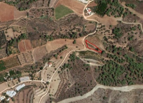 Agricultural Land For Sale in Agia Marina (chrysochous), Paphos - L-109700