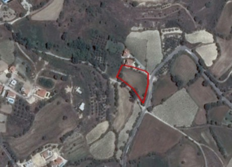 Agricultural Land For Sale in Tala, Paphos - L-109859