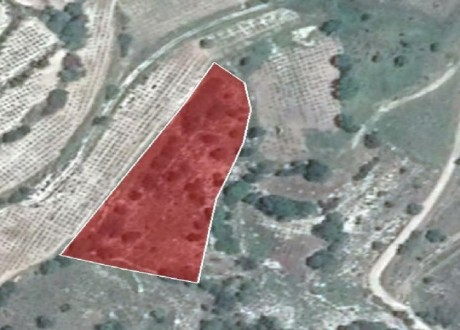 Agricultural Land For Sale in Kilinia, Paphos - L-109948