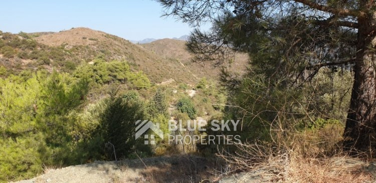 Cyprus property for sale in Sanida, Limassol