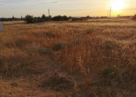 Residential Land  For Sale in Achna, Famagusta - P-104818